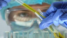 化学家增加在试管的黄色样品,辨认汽油构成,质量 影视素材