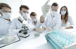 化工实验室的科学家在工作期间 免版税库存图片