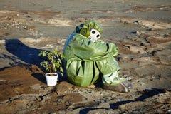 化工沙漠室内植物人诉讼 库存照片