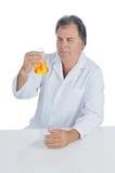 化验员 免版税库存图片