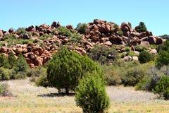 北亚利桑那地形 免版税库存图片