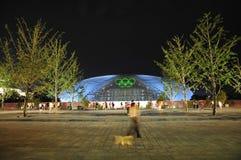 北京国家戏院夜景  免版税库存图片