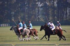 2016年北京国际马球开放比赛 免版税库存图片
