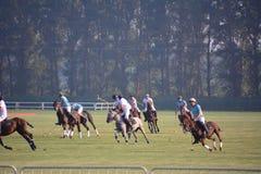 2016年北京国际马球开放比赛 免版税库存照片