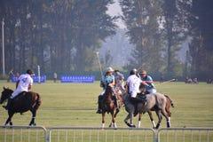 2016年北京国际马球开放比赛 库存图片
