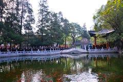 北京大发工业区为世界和平将祈祷 免版税库存图片