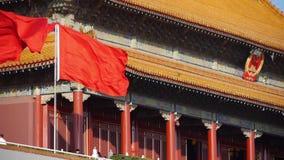 北京天安门,飞行的旗子,中国政治中心 股票视频