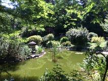 北京庭院宫殿夏天 库存照片