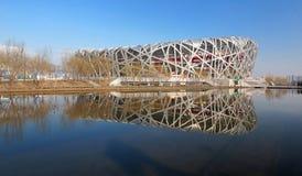 北京瓷国民体育场 免版税库存图片