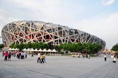 北京鸟嵌套奥林匹克体育场 免版税库存照片