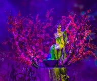 北京,中国- 2018年5月16日:执行在传统的马戏团 免版税库存图片