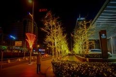 北京,中国- 2017年1月29日, :大城市中国国会大厦、大办公楼和迷人的街灯在a 免版税库存图片