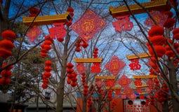 北京,中国- 2017年1月29日, :游人和本机在地球公园,装饰的树奥林匹克寺庙聚集  免版税库存照片