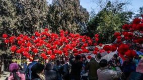 北京,中国2月2日2014年:人们拍照片在红色灯笼下在Ditan公园在汉语新春佳节期间在北京, 股票录像