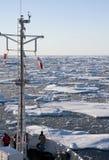 北冰洋在离格陵兰的海岸的附近 免版税图库摄影