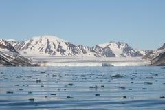 北冰的横向 免版税库存照片