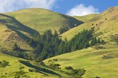 北加利福尼亚的山 图库摄影