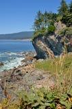 北加利福尼亚的海岸线 图库摄影