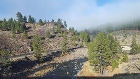 北加利福尼亚2 库存图片
