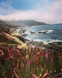 北加利福尼亚 免版税库存图片