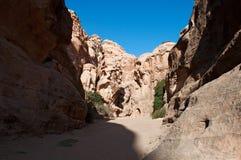北大, Beidah, Beidha, Petra考古学公园,约旦,中东 免版税库存图片