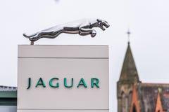 北安普顿英国2018年1月11日:捷豹汽车商标标志立场在北安普顿中心 免版税库存图片