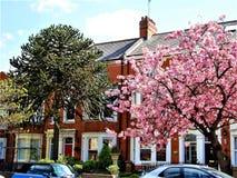 北安普顿,英国都市风景视图  免版税图库摄影