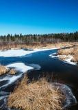 北小河在早期的春天 库存照片