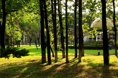 北山公园(III)风景  免版税图库摄影