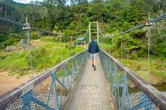 北岛,新的西兰16日2017年:走通过桥梁的未认出的人穿过河参观 库存图片