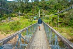 北岛,新的西兰16日2017年:走通过桥梁的未认出的人穿过河参观 免版税库存照片