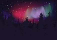 北方的极光 库存照片