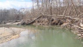 北方针叶林河在早期的春天在一多云天 股票视频