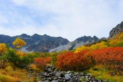 北日本阿尔卑斯风景  免版税库存照片