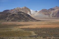 北智利的Altiplano 库存照片