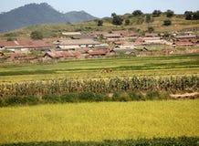 北朝鲜的村庄风景 库存图片