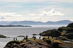 北极光华海洋 免版税库存照片