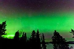 北极光或极光borealis绿色焕发  库存照片