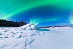 北极光极光borealis强烈的显示  免版税库存照片