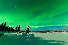 北极光极光borealis强烈的显示  免版税库存图片