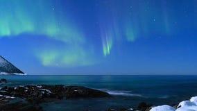 北极光极光Borealis HD定期流逝在夜空的 股票录像