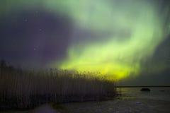 北极光,拉多加湖,俄罗斯 免版税库存照片
