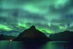北极光从Lofoten,挪威的极光borealis 免版税库存图片
