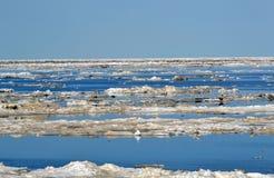 北极冰流程 库存图片