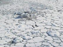 北极冰海洋装箱海运表面 图库摄影