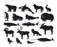 北极动物剪影收藏 皇族释放例证