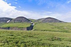 北极寒带草原 库存照片