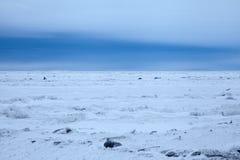 北极海冰 免版税库存照片