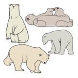 北极熊传染媒介例证 库存图片