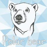 北极熊传染媒介例证 库存例证